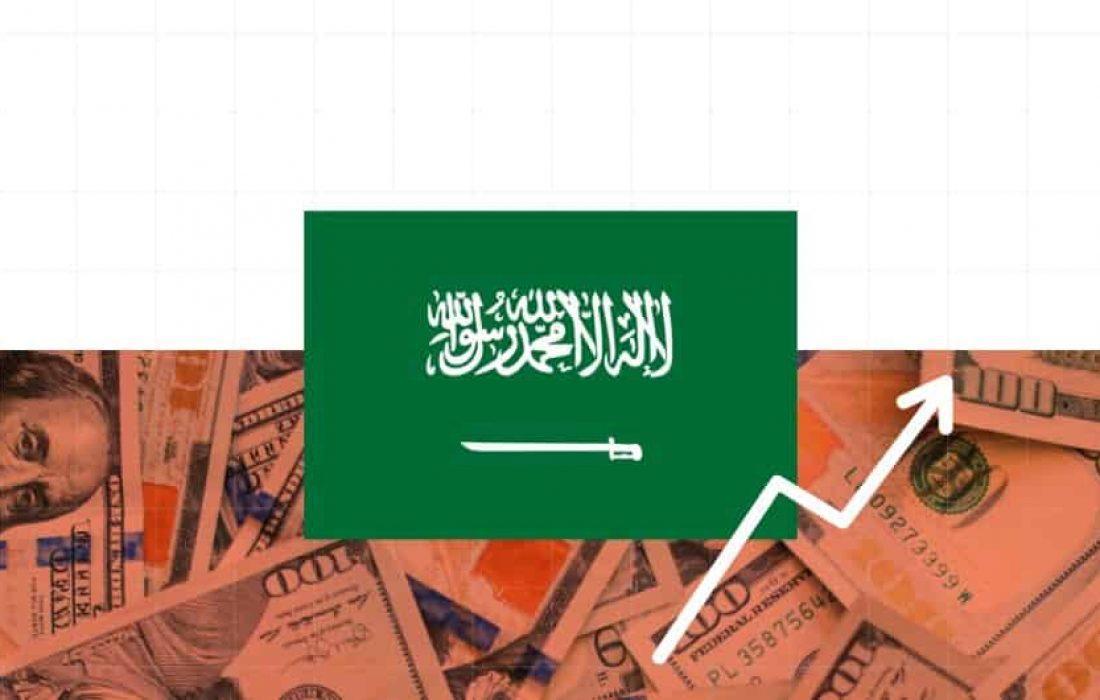 ما الدور الذي يلعبه صندوق STV في قطاع ريادة الأعمال بالسعودية؟