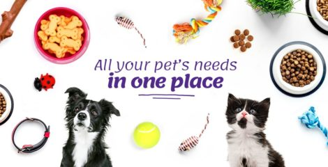 Pawsket App: One-Stop-Shop for Pet Care Products