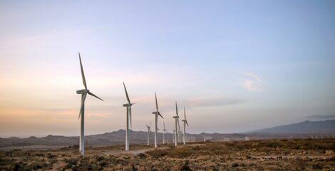 EDF Renewables and Masdar Launch Saudi's First Wind Farm